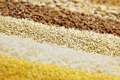 谷物 减肥每日必吃4类食物 疯狂享瘦 减肥餐