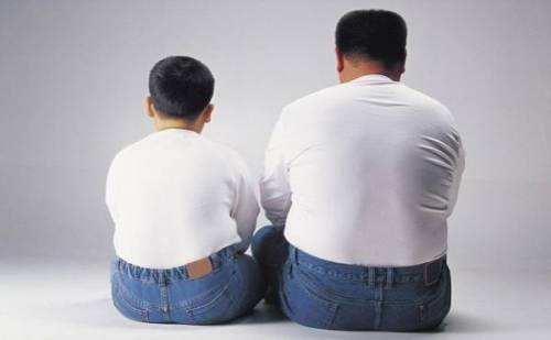 儿童肥胖 儿童肥胖的原因 肥胖原因