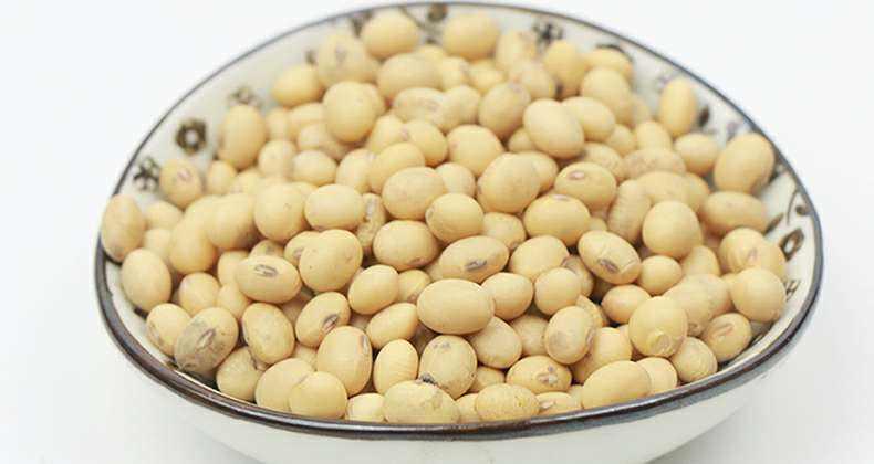 减肥吃豆子做零食 减肥吃豆子做零食 减肥零食