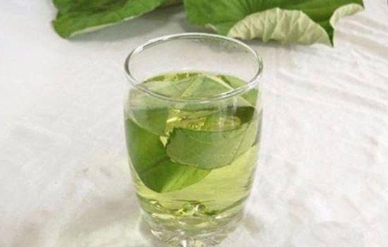 荷叶山楂减肥茶 荷叶山楂减肥茶 可以减肥吗? 减肥茶
