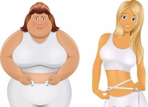 每日多睡一个小时冬日巧瘦身 每日多睡一个小时冬日巧瘦身 瘦身减肥方法